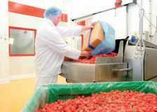 Les Fruits rouges de l'Aisne à Laon transforment beaucoup de sa collecte de fruits en produits surgelés