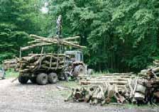 De la forêt de Retz, les débardeurs extraient 140 000 m3 annuels.