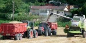 Les cours du blé ont atteint des niveaux qui n'ont pas été pratiqués depuis cinq ans, à plus de 230 € la tonne.