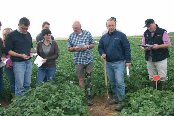 Les producteurs qui travaillent pour Bayard distribution, des techniciens et des maisons de plants ont découvert, sous le ciel picard, les variétés de demain.