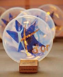 Cette année la soirée de remise des trophées de la formation professionnelle a récompensé treize entreprises de la région.