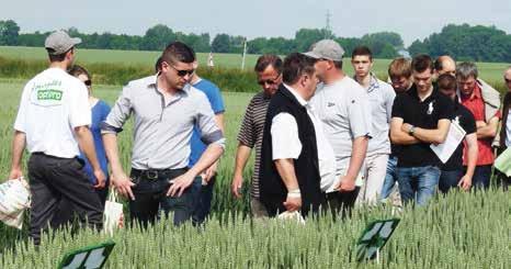 Les agriculteurs ont pu comparer les nouvelles variétés.