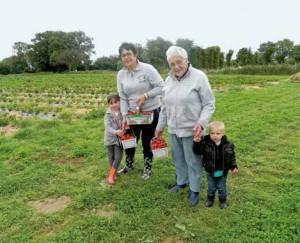 Lancé l'année dernière, le self fraises de Sommereux compte également de nombreux fruits et légumes.