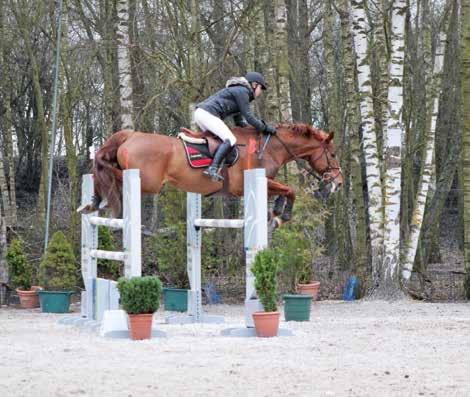 Ophélie Mouflet, picarde, cavalière professionnelle de saut d'obstacles.