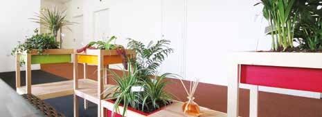 Les trois entrepreneurs ont déjà noué des partenariats avec des paysagistes et des cabinets conseil RSE à travers le pays.