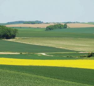 40% des emplois de la filière se situent en zones rurales.