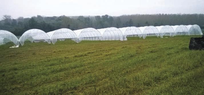L'espace test s'étend sur 1,5 hectare, dans l'enceinte du lycée agricole du Paraclet, à Cottenchy.