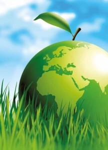 L'économie circulaire fait la part belle au développement durable.