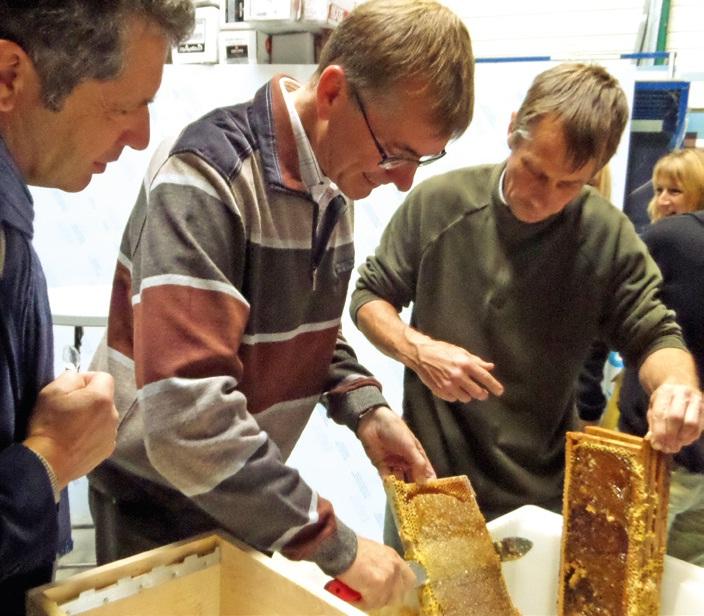 """Les dirigeants des entreprises marraines des ruches ont participé à la récolte du miel de """"leurs"""" abeilles avant de le goûter."""